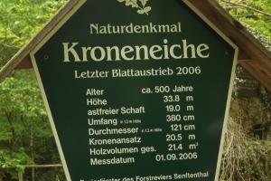 201705-buchenwald-chorin-03-schild-kroneiche-hoch