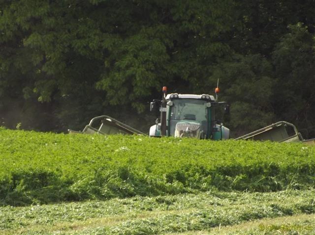Traktor im Barnim #03