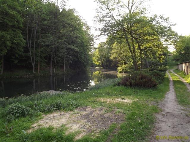 spechthausen_2012_14