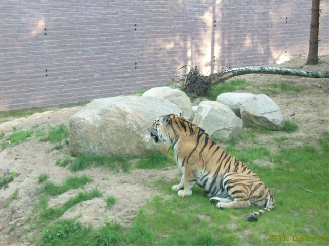 zoo_eberswalde_2008_12