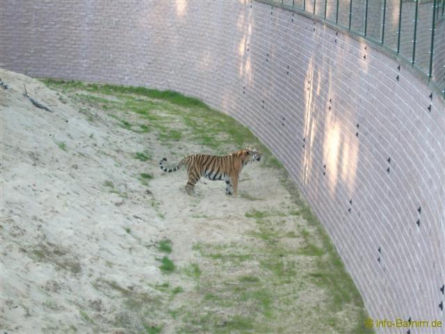 zoo_eberswalde_2008_18