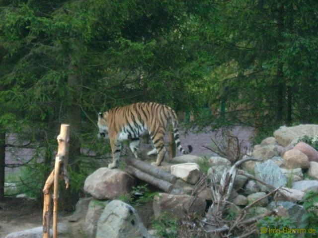 zoo_eberswalde_2008_20