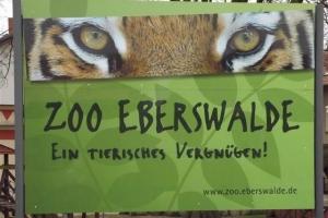 eberswalde_2015_1